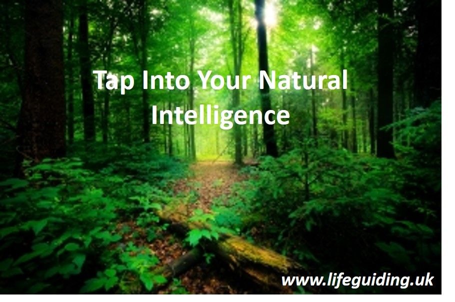 natural intelligence