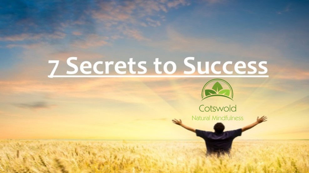 7-secrets-to-success-1-638